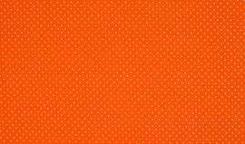 Ministip Oranje