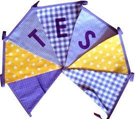 Vlaggetjes met naam: ontwerp Tes