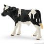 13798 Holstein Kalf