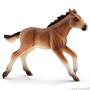 13807 Mustang veulen Out