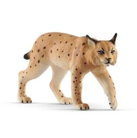 14822 Lynx