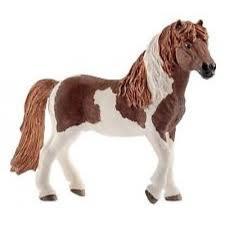 13815 IJsland pony hengst