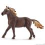 13805 Mustang hengst