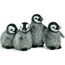 14618 4 jonge pinguins. Out