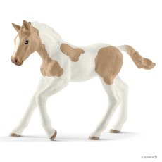 13886 Paint Horse veulen