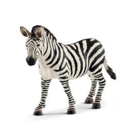 14810 Zebra