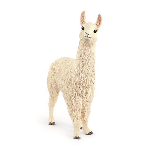 13920 Lama