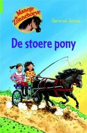 De stoere pony