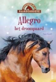 Allegro het droompaard
