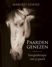 Paarden genezen, energietherapie voor je paard