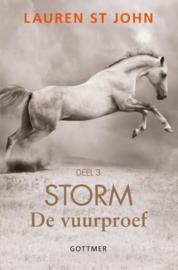 Storm 3 - de vuurproef
