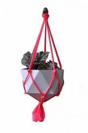 Pakket plantenhanger neon roze
