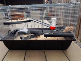 Hamsterkooi Charlie 2