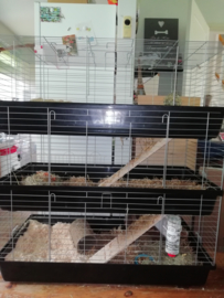 Konijnenkooi / caviakooi Skyline Rabbit 120 triple antraciet