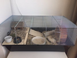 Hamsterkooi Olaf 2
