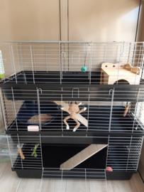 Konijnenkooi / caviakooi Skyline Rabbit triple zwart