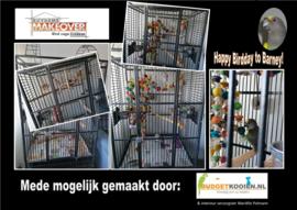 Papegaaienspeelgoed