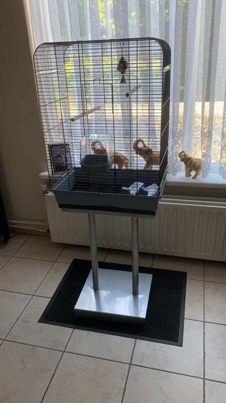 Vogelkooi Nina grijs/zwart + standaard S004 grijs