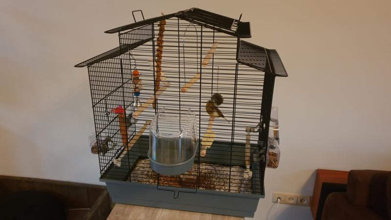 Vogelkooi Iza 3 grijs/zwart