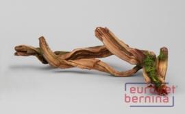 Mangrove Driftwood Root