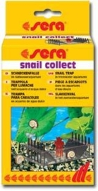Snail Collect