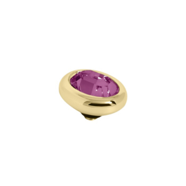 Twisted oval Amethyst | Rvs, Geel Goud, Rose Goud ( TM57 en 58)