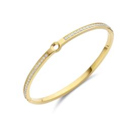 Vivid Hinged bracelet | Rvs, Geel goud, Rose goud (VB10)