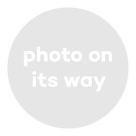Pearl CZ earring | Rvs, Geel Goud Rose goud (FE33)