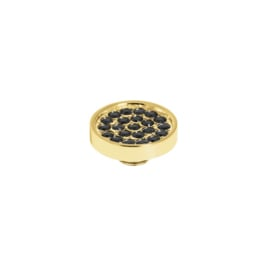 Vivid plate cz Black | Rvs, Geel Goud, Rose Goud (VM19)
