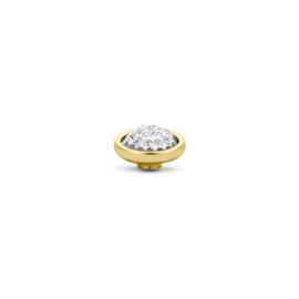 Vivid Shiny Crystal | Rvs, Geel goud, Rose goud