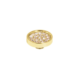 Vivid plate cz Champagne | Rvs, Geel Goud, Rose Goud (VM19)