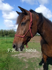 F.R.A. Knoophalster BABIA