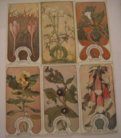 Old German collector cards - Poisonous plants complete series I - VI. Stollwerk Chocolate 1900 - 1920's (15309)