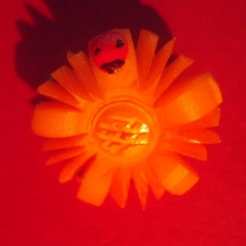 1937-03-6/7 German Winter Relief donation pin. Daisy with lady bird. Synthetic resin  T071 (6505)