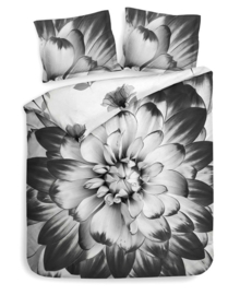Heckett & Lane Dekbedovertrek Rosati (black/white) 260x200/220