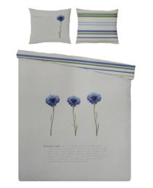 Covers & Co Dekbedovertrek Korenbloem (blue) 240x200/220