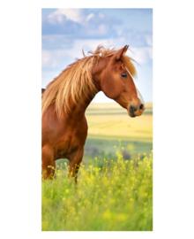 Strandlaken Wild Horse (multi)