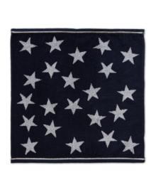 DDDDD Keukendoek Star (blue)