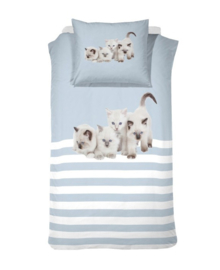 Cinderella Dekbedovertrek Cute Kittens (blue) 140x200/220