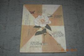 Prent witte bloem