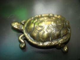 Messing schildpad.