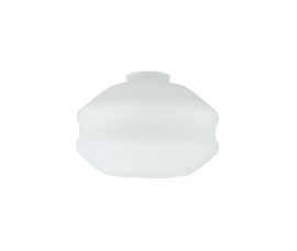 Glazen kap Roof d19cm h12cm gr5,5cm E27 opaal nr 450.00