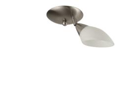 Combinatie 1-L plafondspot mat nikkel met glazen kap schepje 9cm opaal nr 7Sp1-232.00
