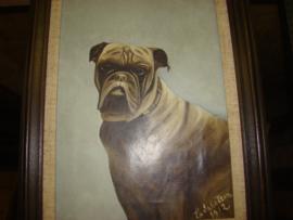 Oud schilderij Bulldog