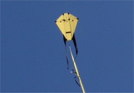 H-Kite R2f Yellow