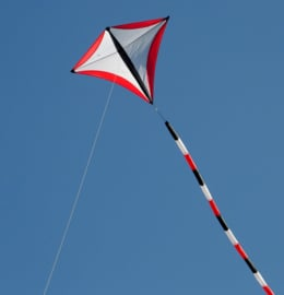 Sky Scout - R2F - Black / White / Red