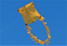 Genki Kite R2F - Gold