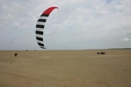 Zebra Z2  3.5 Kite only