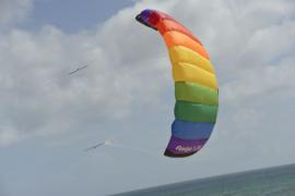 Amigo 1.35 R2F - rainbow