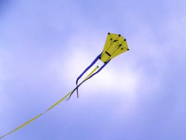 H-Kite R2f Yellow